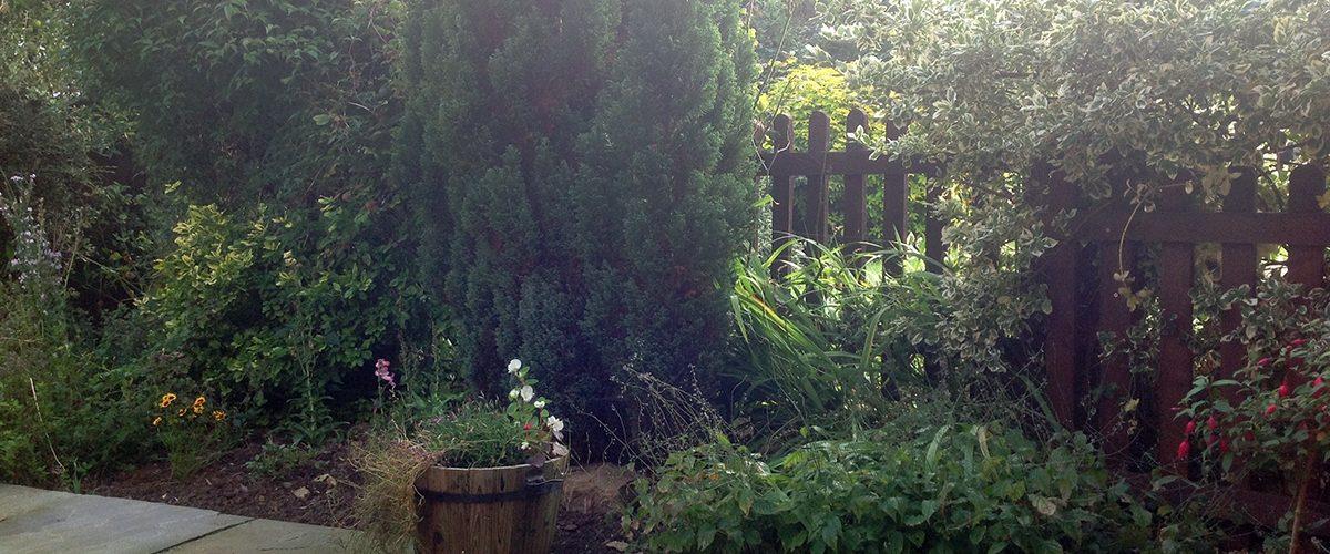 garden2018